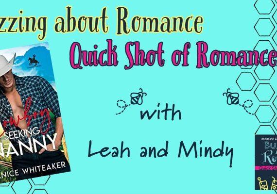 Quick Shot of Romance : Cowboy Seeks Nanny by Janice Whitaker